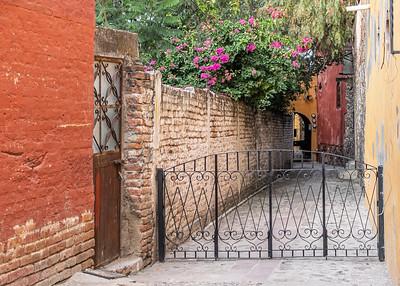 San Miguel Allende_011119_DSC0137