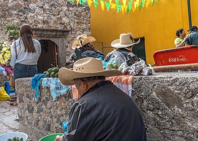 San Miguel Allende_011119_DSC0873