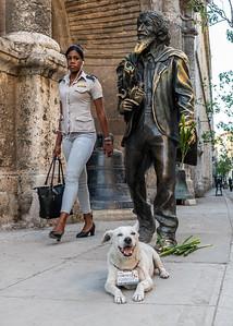 Havana_100619_DSC3313