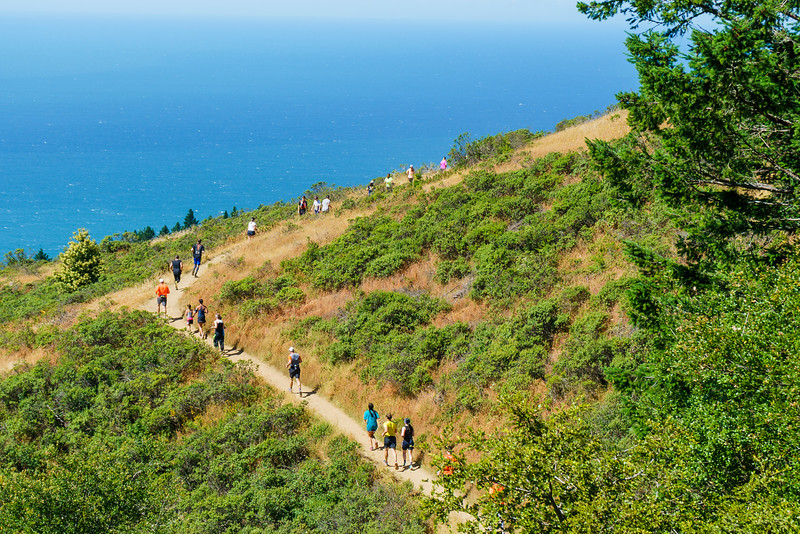 105th Annual Dipsea Race