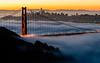 Golden Gate Awash in Sunrise Fog