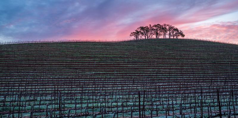 Winter's sunrise at Kunde