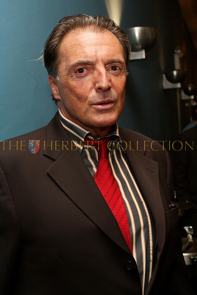 NEW YORK - MARCH 17:  Actor Armand Assante attends the MDG Awards global launch event at the United Nations building on March 17, 2009 in New York City.  (Photo by Steve Mack/S.D. Mack Pictures) *** Local Caption *** Armand Assante