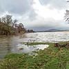 Thu 23rd Nov : Bassenthwaite Lake :  Flooded South Promontory