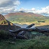 Sat 9th Sep : Barf And Skiddaw From The New Forest Road