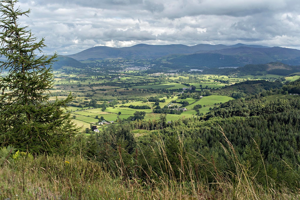 Tue 1st Aug : Bob's Seat : View To Keswick