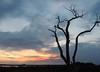 Blue Sunset-1