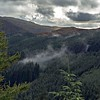 Tue 21st Sep : Seat How : Whinlatter Forest : Mist Rising