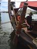 Draken Harald Hårfagre Steering Board