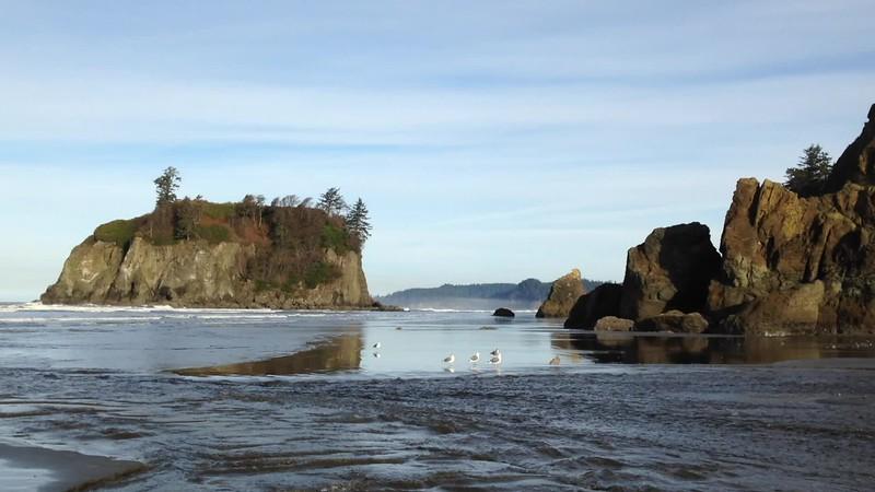 Stunning beach at Olympic National Park, Washington