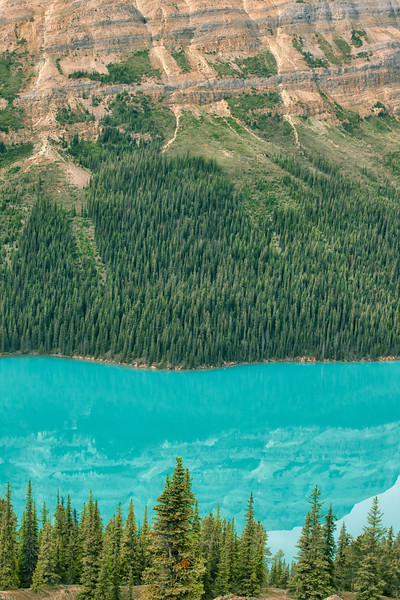 Peyto Lake (vertical orientation close up)