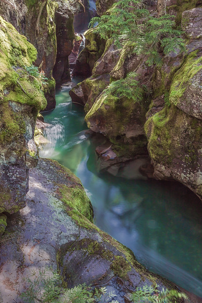 Avalanche Creek.