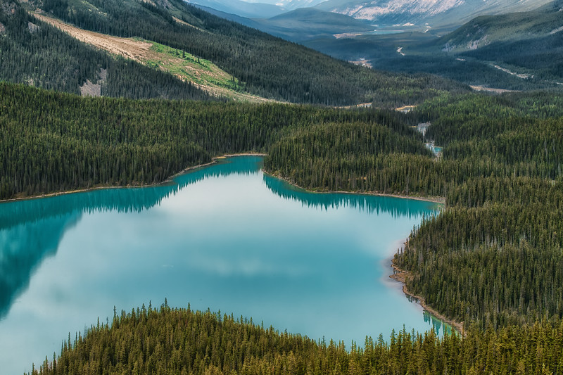 Peyto Lake close up.