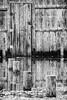 _MG_7662x4(A,Radius6,Smoothing3)
