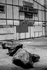 aa_busler_closed_truck_stop_062708_6_bw_2619428631_o