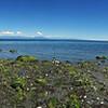 Eagle Point Beach, Nanaimo BC, Canada.