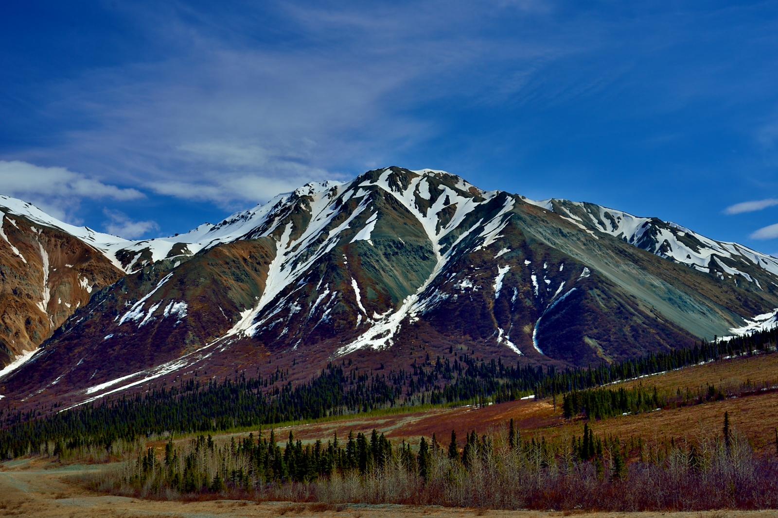 Isabel Pass in the Alaska Range