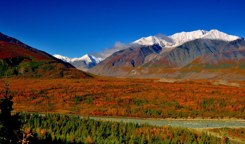 Fall colors in the Alaska Range, seen from the Richardson Highway
