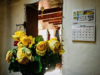52320-roses-900@2x