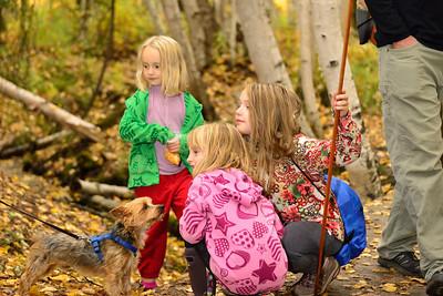 A Fall walk at Creamer's Field