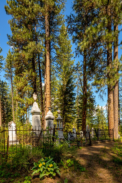 Spring Flowers at the Placerville Cemetery