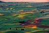 Red Barn in a sea of green farm fields