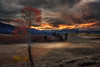 Dramatic sunset and autumn Aspen tree Sawtooth valley