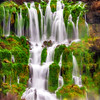 Springs with lush green grasses flow from the side of a cliff in Idaho