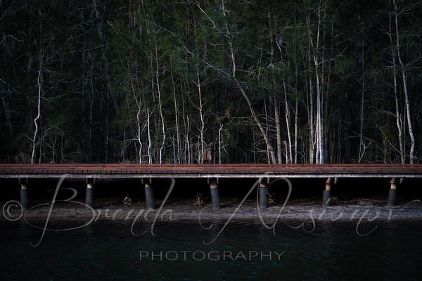 No Water Under This Bridge