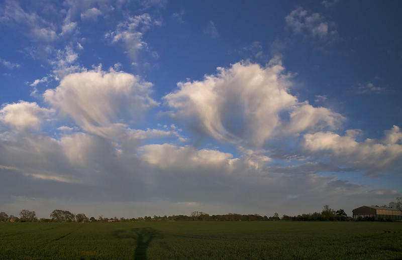 May 8 2011. Jellyfish clouds descend over the UK. These amazing clouds (Altocumulus Castellanus with trailing virga) made a rare appearance this evening. Only once in the past 10yrs have I seen such a wonderful display. A rare creature in this size and abundance.  The amazing resemblance to jellyfish is caused by precipitation falling from the parent cloud and evaporating before reaching the ground. Truly spectacular. Captured with Olympus E3 & 12-60mm SWD.
