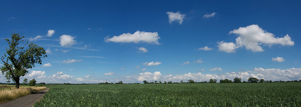 25 July 2013. The deep blue skies with scattering of cumulus clouds was irresistible. Captured with Oly OM-D and 12mm, f4, 1/4000s. 3 landscape images stitched for the pano.