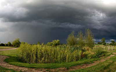 29 July 2013. Summer storms fire over the East Midlands and the bubbling convective clouds make great subjects. Using the bushes and pond to add foreground interest and compose. The precip falling (on left) behind the clear skies (to right) looks spectacular. This is four portrait images stitched for the pano. Captured with Oly OM-D & 12mm,  f5 1/1250s