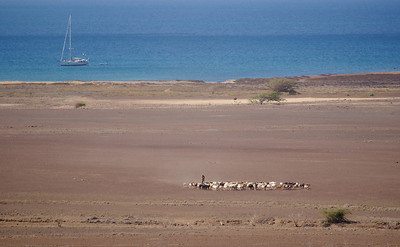 East coast of Sal overlooking the sea from a high vantage point. Shepherd and livestock plus boat = great composition :-)