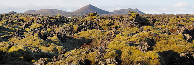 Volcanic landscape covered in moss. Olympus E-M1, 12mm. The scenery in many parts is like a set from a Hollywood movie. The harsh volcanic rock landscape, covered in green moss make quite a dramatic subject. This panorama is a 3 shot stitch.