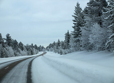 The drive from Tromso to Karasjok took a mammoth 7 hours. It took us through Finland and sights like this were common. The frost and snow covered trees looked stunning. Olympus E510, 14-42mm
