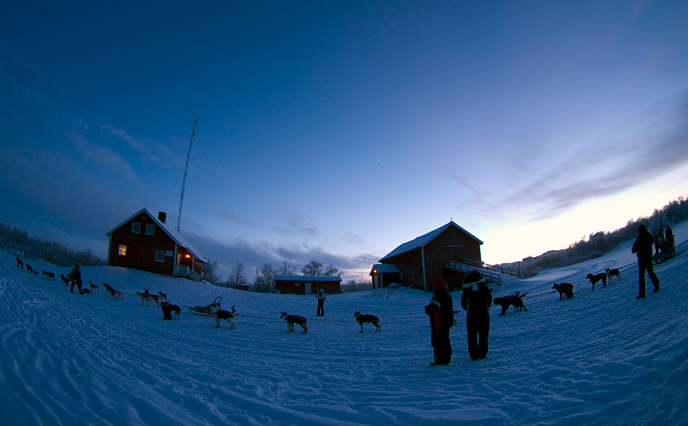 As we arrived at base camp in Ravnastua, Karasjok, sun was fading. We were greeted by passing dog sleds. A nice start. Olympus E3, 8mm fisheye
