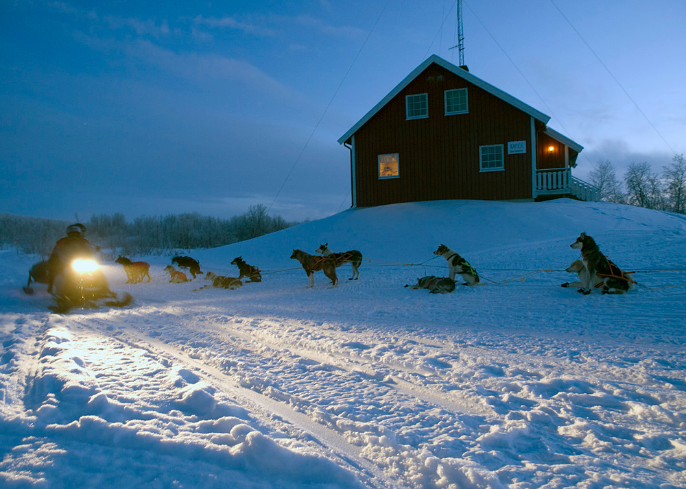 As we arrived at base camp in Ravnastua, Karasjok, sun was fading. We were greeted by passing dog sleds. A nice start. Olympus E3, 7-14mm