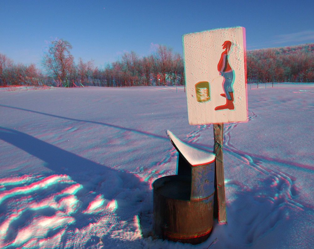 3D shot. You will need the red and blue glasses to see this. I am shooting some 3D this year with a special dual camera rig and this worked quite well. Toilet arctic style.