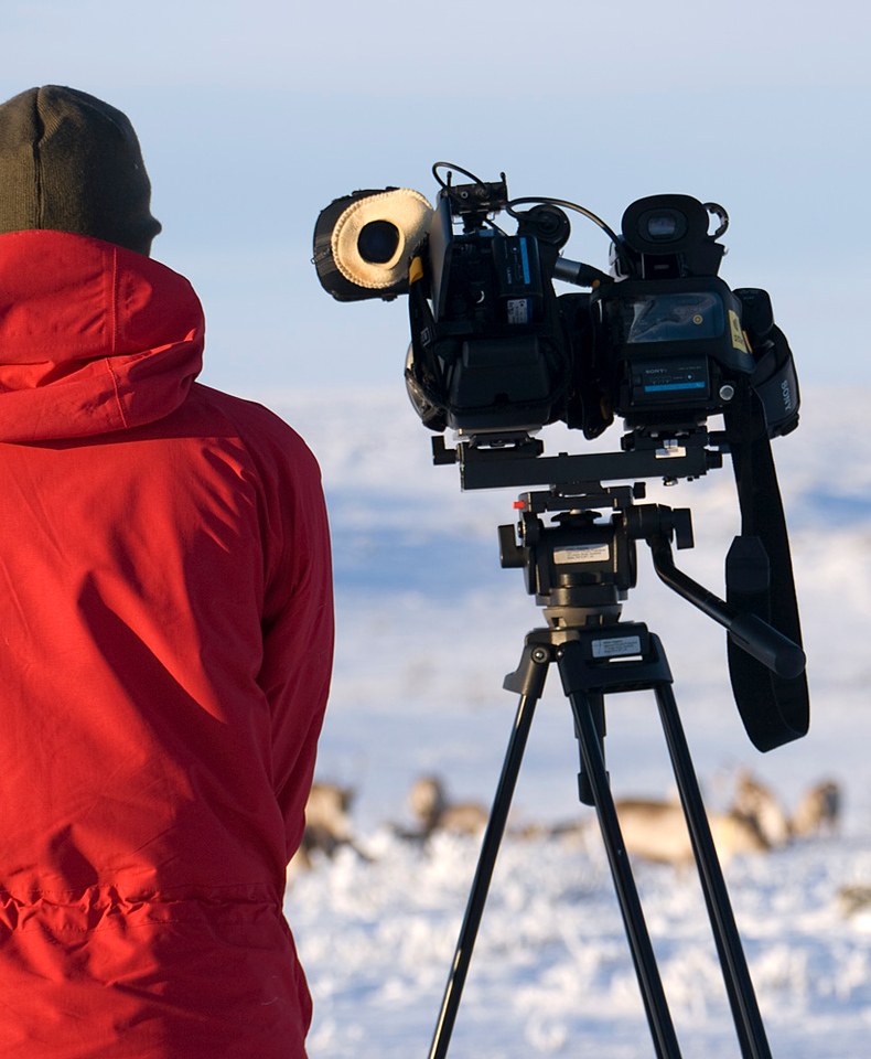 Al in action filming the reindeer.