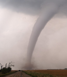 Stunning elephant trunk tornado on ground at Harper, Kansas, USA.  Olympus E1, 50-200mm