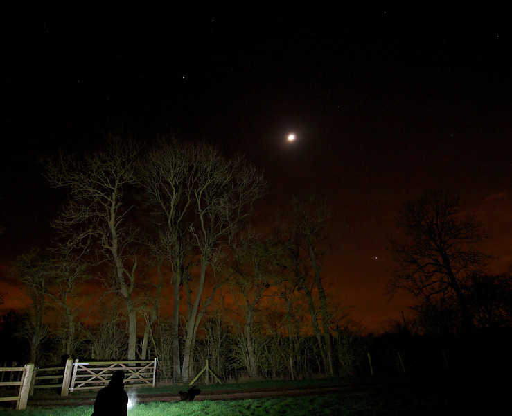 Jan 28 2012. Nice trio of Jupiter, waxing Moon and Venus. Jupiter is 10 o'clock from moon and Venus 5 o'clock. Composed against some nice trees in foreground. Lit via flash burst. Captured with Oly E5, 7-14mm lens. 5s, F4, ISO 500.