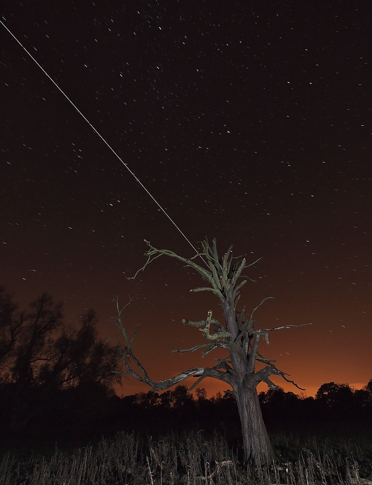 Oct 22 2011 ISS pass from 1941hrs flyby. Approx 15 no 15s exposures captured with Olympus E5 & 8mm fisheye at my favourite tree ;-)