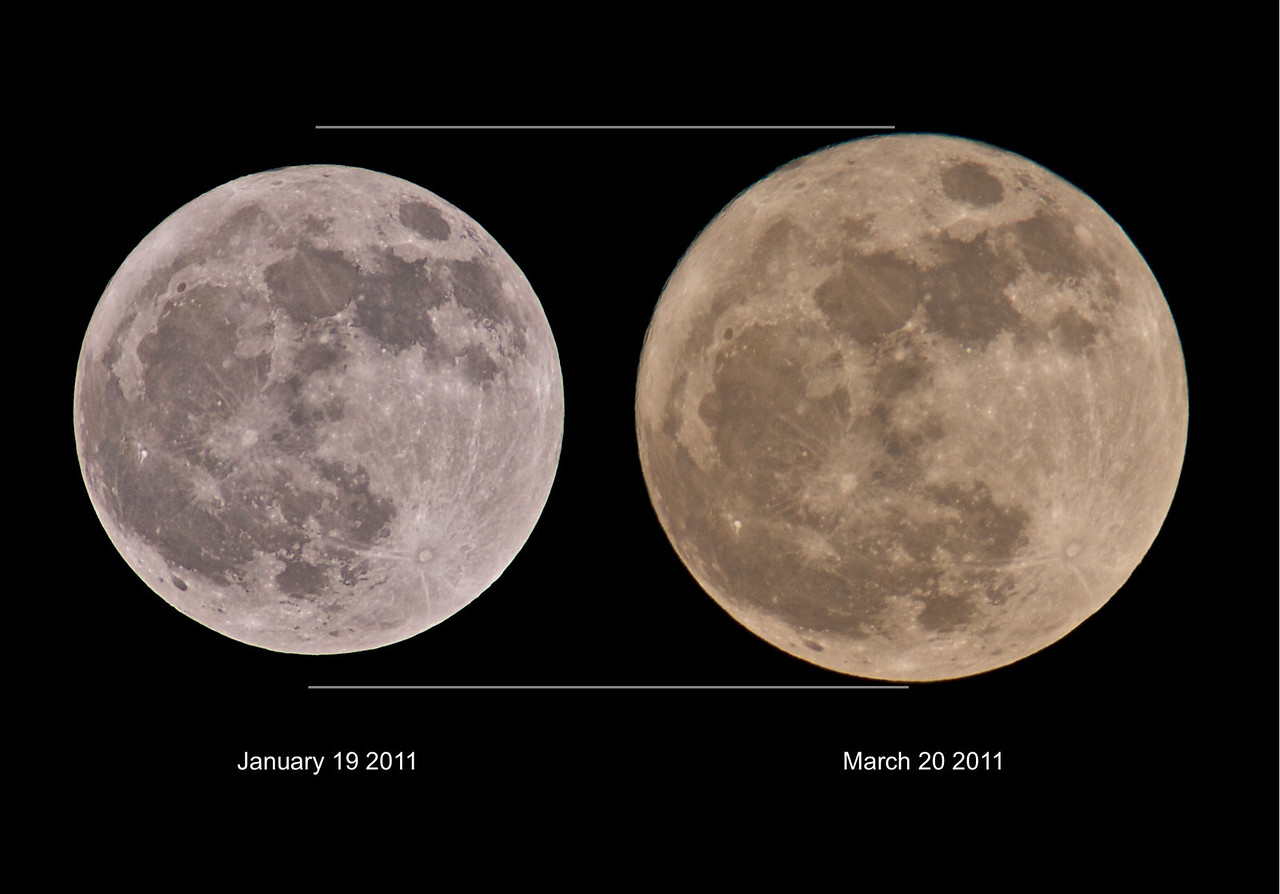 "March 19th 2011 a super ""perigee moon"" - the biggest in almost 20 years. I located to clear high (120m ASL) spot with a good easterly horizon view with some foreground trees in order to add scale. This is a size comparison shot versus a full moon from january this year. Both captured using the Olympus E5/E3 and 90-250mm with x2 TC. The colours of the moon as it dipped above the horizon and moved through the pollution transformed from a blood red to copper orange eventually clearing into blinding white. An amazing moonrise.  Full Moons vary in size because of the oval shape of the Moon's orbit. It is an ellipse with one side (perigee) about 50,000 km closer to Earth than the other (apogee).  Nearby perigee moons are about 14% bigger and 30% brighter than lesser moons that occur on the apogee side of the Moon's orbit. More here - http://science.nasa.gov/science-news/science-at-nasa/2011/16mar_supermoon/"