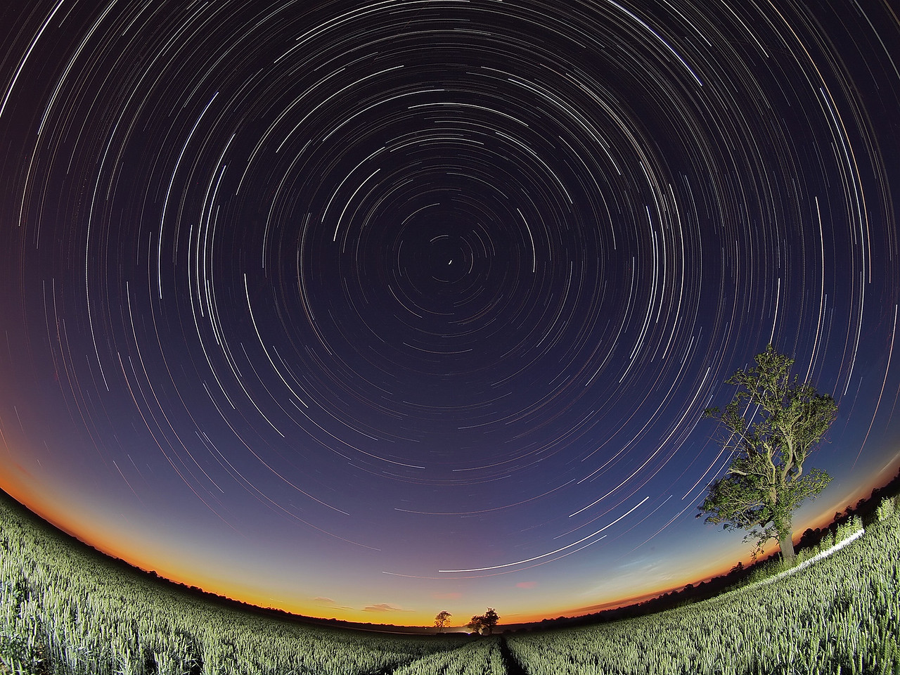 June 30/July 01 2011. I think this is my best fisheye startrail to date. Worked out great with polaris bang in the middle. I gave the image more natural composition by offsetting the tree as the foreground subject, lit with few flash bursts. Just see the horizon noctilucent making an appearance too bottom right. Captured with Oly E5 & 8mm fisheye. Approx 1000 exposures at 15s, ISO 500, F3.5 stacked with startrails software.