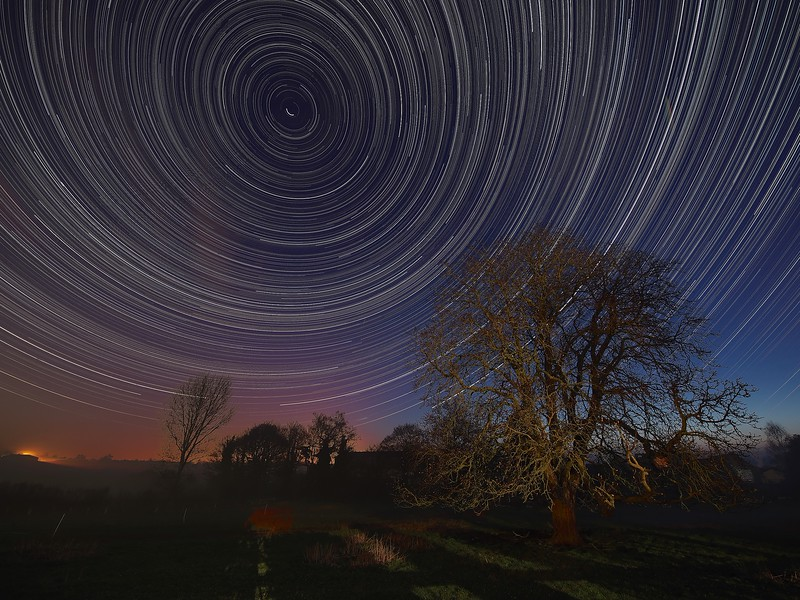 Cotesbach StarTrail 05/06 April 2015, Leicestershire, UK. First star trail at my new house in Cotesbach. I have a wonderful horse chestnut tree which is a great foreground subject. 8 hours and justst under 2000 exposures Star Trail captured with Olympus OM-D E-M5 & 7-14mm lens. The image is composed around the North Star (Polaris), the pole star around which all others spin.<br /> How did I capture it? - Camera on tripod F4, ISO 320, 15s. Manual focus set to infinity I composed the image around the North Star (Polaris) to ensure a swirly star trail above the trees. The first shot was captured/exposed through the lcd screen and then using the remote cable (set to lock) and turning off lcd (maximise battery) I depressed shutter. This allowed the camera to shoot continuous for 8 hours (using 2 battery pack). I transferred all images (High res JPEG) to MAC and imported/stacked in StarStax software. Plane trails removed using Pixelmator software. The final composite reveals 8 hrs of Earth spinning, as shown through the stars.