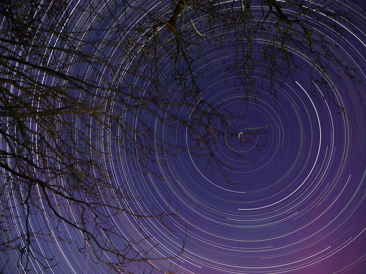 My second star trail shot with the Olympus E5. 25 Nov 2010. The only good thing about the unprecedented cold snap currently gripping the UK is the clear sky opportunities :-) For this shot I used the 12-60mm SWD lens and  mounted the E5 on a tripod underneath a clump of trees at the bottom of my field and composed around Polaris (around which the trail spins). IS0 set to 400 opened the aperture as wide as it went (F2.8) and shot 15s exposures continuously all night from approx 7pm to 7am the next morning. Noise reduction was switched OFF. Camera was powered via external using extension lead from garage. To prevent the camera and lens from dewing and freezing over my home made dew shield was used. The following morning I retrieved the camera from a frozen field where temps dropped to -5C. After downloading the 2500 images and running through stacking software the final composite, that you see, was produced.  The image was imported into Aperture with a tiny levels adjustment and removal of some annoying plane light trails. NO noise reduction filter was applied and reduced from the original JPEG size to this one you see with No sharpening.