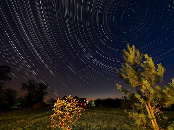 Star Trail over garden trees capturing the rural landscape.