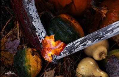 October Harvest