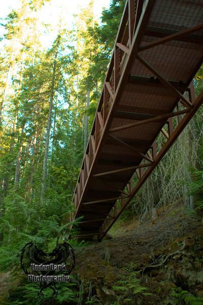 Under The Bridge-5892