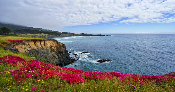 Mother's Day at Sea Ranch 2016